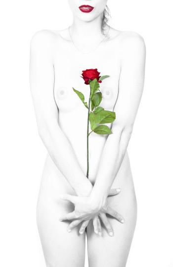Toma otra rosa.