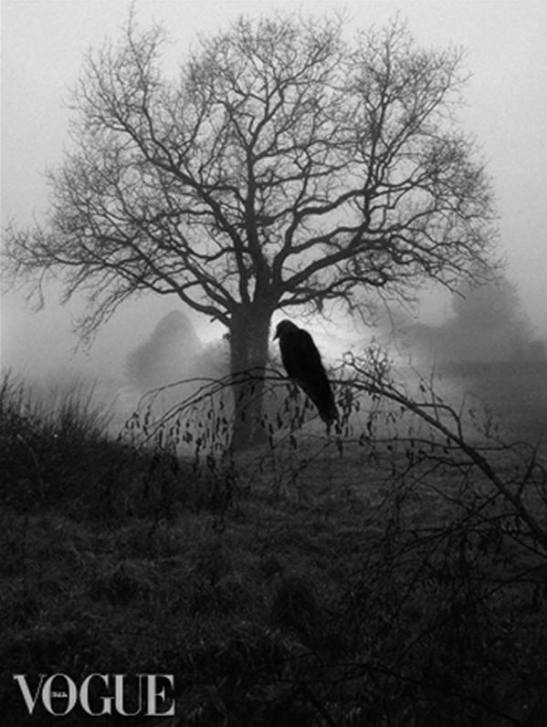 Lost in the imagination by Eva Moreno BBGC
