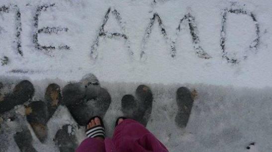 amo tus pasos