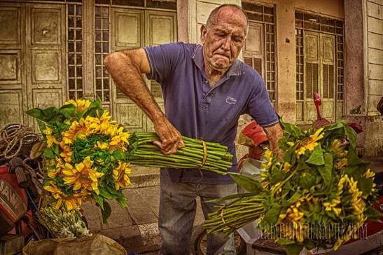 Azucenas ,Girasoles — in Santa Clara, Cuba. by Ariel Arias