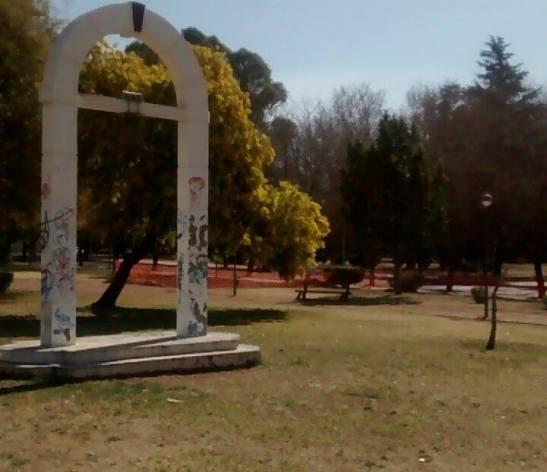 Los Aromos de un parque de Mendoza en Argentina