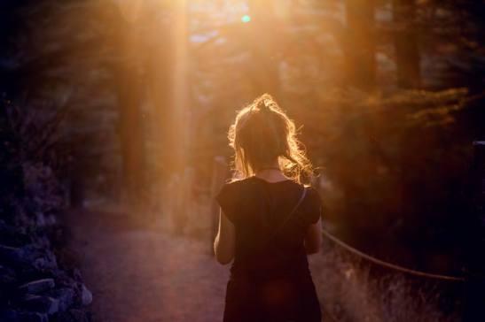les chemin vers les cedres - Christelle Ighniades